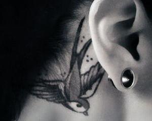 Small swallow tattoo behind girls ear