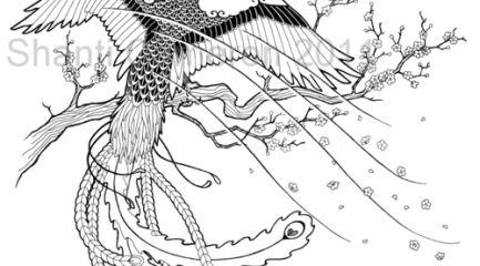 Japanese phoenix on cherry blossom design