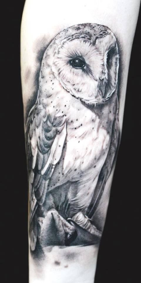 realistic black white barn owl tattoo