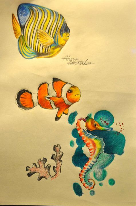 Angel fish clown fish and seahorse designs