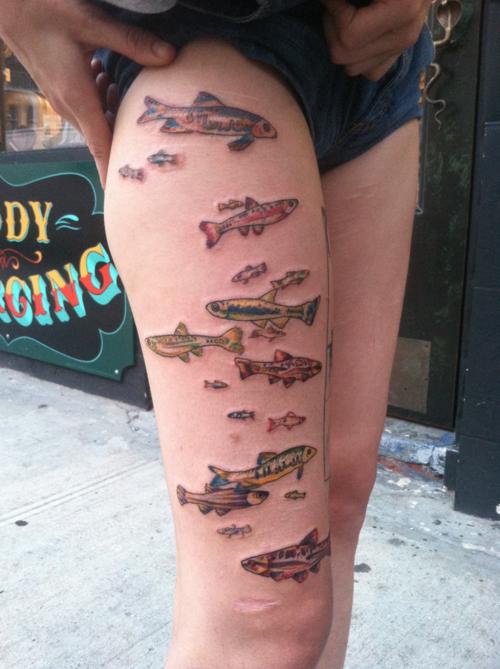 Minnow fish tattoos covering shark bites