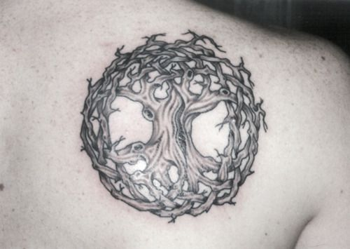 Celtic tree of life shoulder tattoo