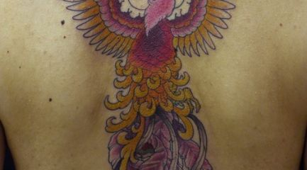 Colorful full back phoenix tattoo