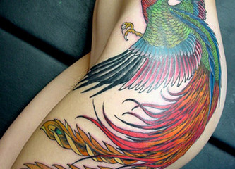 Huge colorful phoenix tattoo on girls hip