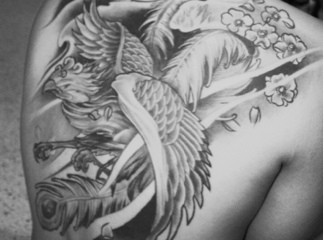 Japanese phoenix back tattoo with cherry blossoms and moon