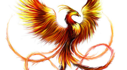Nice phoenix tattoo design in fire colors