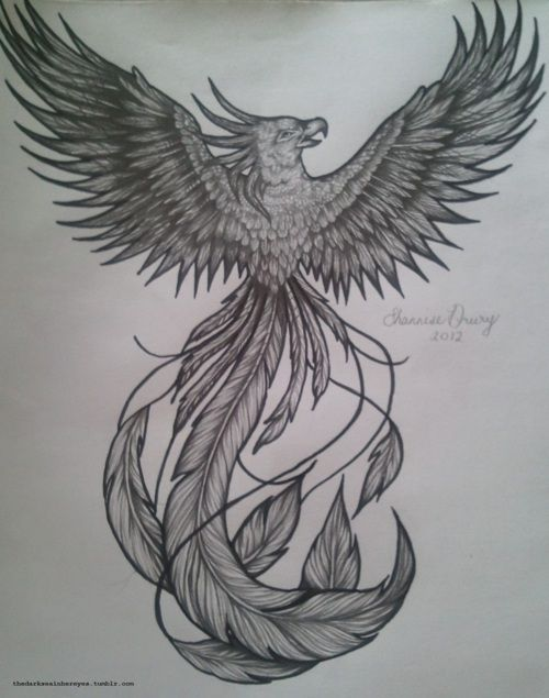 Phoenix tattoo design with long feathers in black