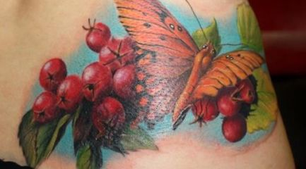 Butterfly Tattoo Pictures Archives Tattoou